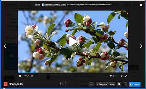 Проигрыватель фото, видео, аудио файлов в облаке Mail.ru