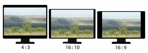 На мониторе фотографа фотография должна занимать максимальную площадь