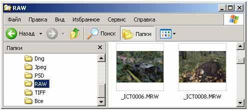 Просмотр фото в формате raw програмку
