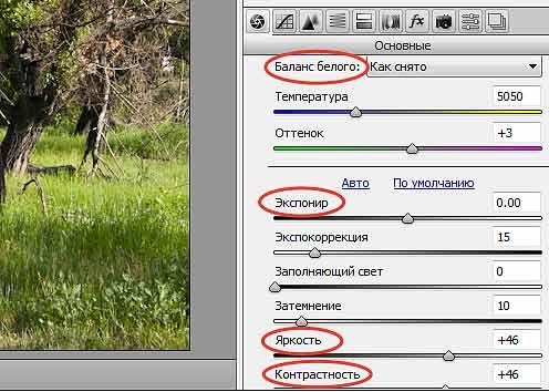 Используя специальную программу в файлах фотографий формата RAW можно изменять настройки фотоаппарата
